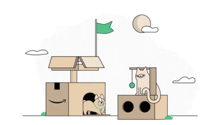 Amazon boîte livraison module chat