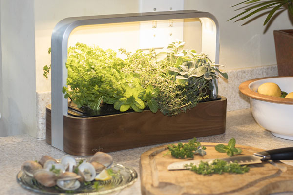des fines herbes l 39 ann e avec ce bac intelligent. Black Bedroom Furniture Sets. Home Design Ideas
