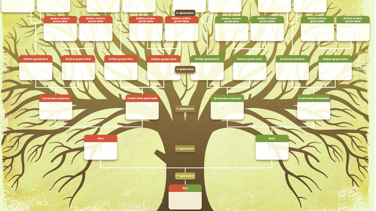 G n alogie sites et outils pour faire votre arbre - Comment faire crever un arbre sans le couper ...