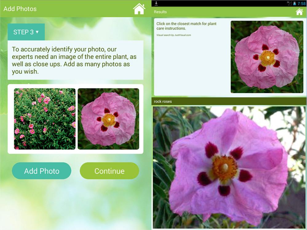 l 39 app pour identifier une plante ou une fleur en la prenant en photo. Black Bedroom Furniture Sets. Home Design Ideas