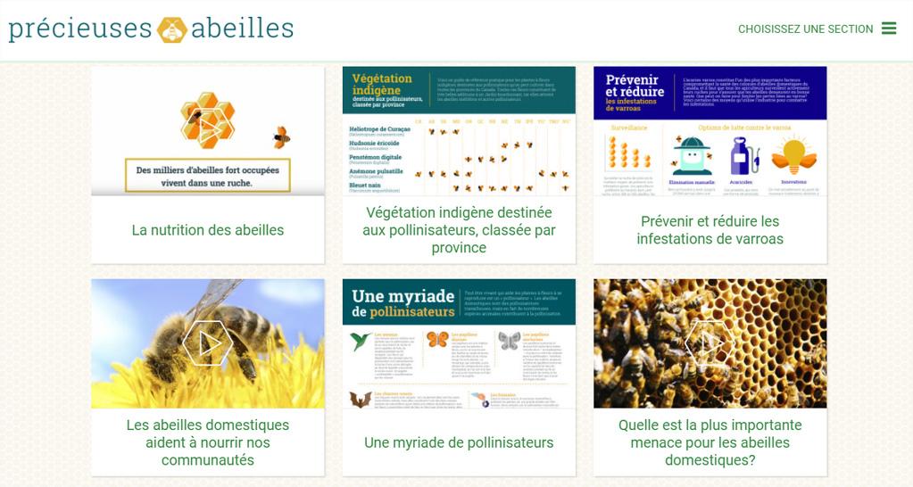obtenez des semences gratuites pour sauver les abeilles. Black Bedroom Furniture Sets. Home Design Ideas