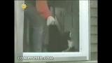 Miow… ouvre-moi la porte